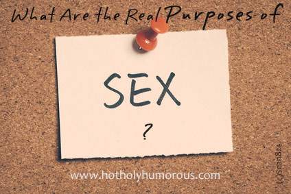 What Are the Real Purposes of Sex?